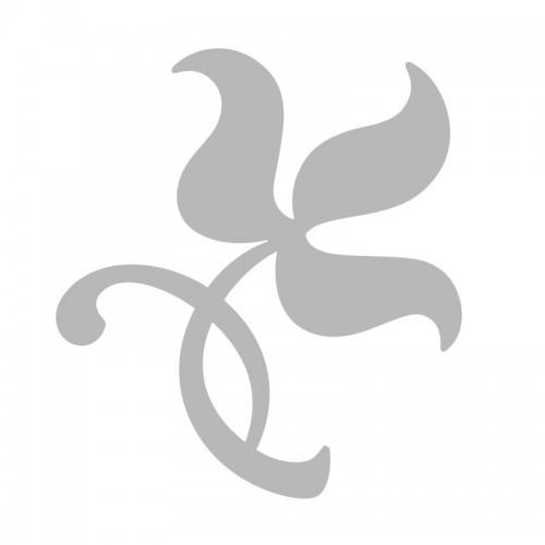 YI TANG - Saccarum Granorum