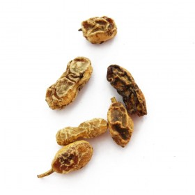 HUAI JIAO - Fructus Sophorae