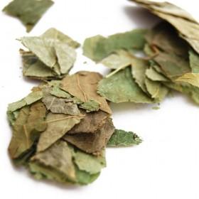 YIN YANG HUO/XIANG LING PI - Herba Epimedii