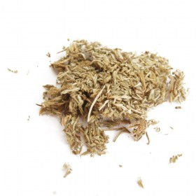 YIN CHEN HAO - Herba Artemisiae Capillaris