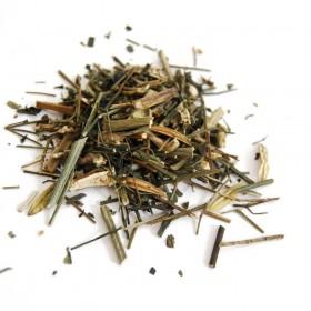 CHUAN XIN LIAN - Herba Andrographis