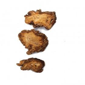 DANG GUI (TOU) - Radix Angelicae sinensis capitis