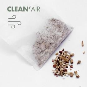 CLEAN'Air