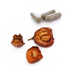 SHAN ZHA - Fruto del espino / Acerola