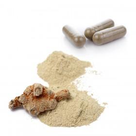 SAN QI By PV Herbs Cápsulas