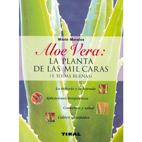 Aloe Vera; La planta de las mil caras