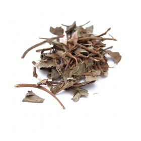 AI DI CHA - Herba Ardisiae Japonicae