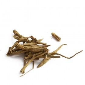 DA JI - Radix Euphorbiae Pekinensis