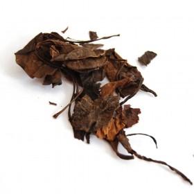 LU XIAN CAO/LU TI CAO-Herba Pyrolae Rotundiflora