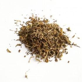 CHUI PEN CAO - Herba Sedi Sermentosi