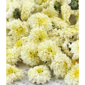 BAI JU HUA Flos Chrysanthemi Morif. Albae 20gr