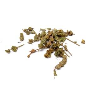 CHE QIAN CAO - Herba Plantaginis