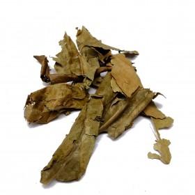 JU YE - Folium Citri Reticulatae
